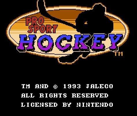 Hockey Pro Sport, Профессиональный хоккей